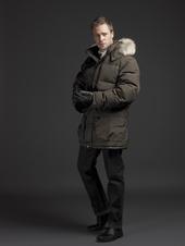 Arctic_brown